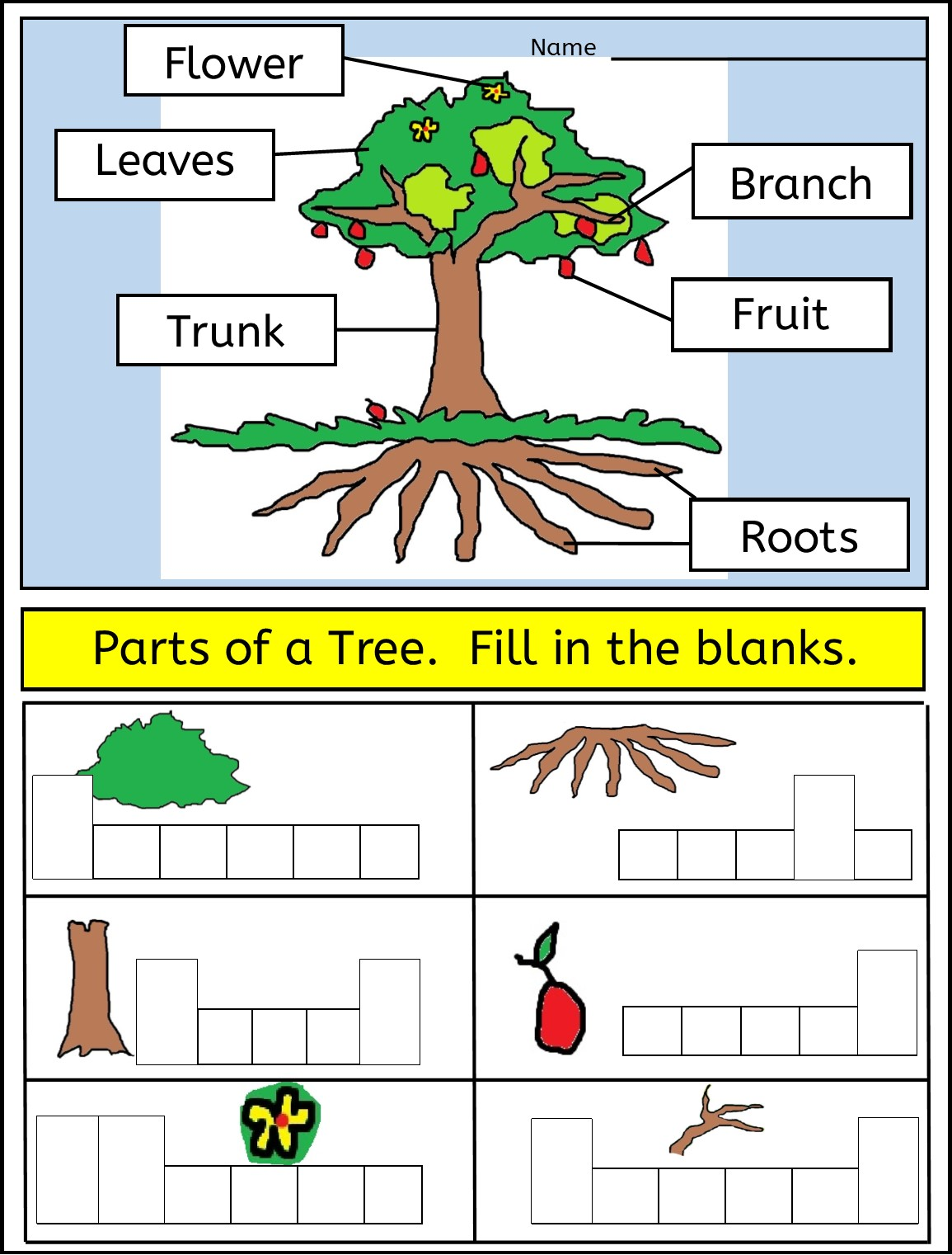 Parts Of A Plant Diagram Worksheet astonishing Parts Of A Plant and moreover parts of a tree worksheet for kindergarten – theroughriders club moreover Parts of a Tree Worksheet   Little Learning Lane TPT Store as well K Earth Science Printable Worksheets What Is Soil Worksheet 2 Grade as well Trees besides Parts Of A Tree Worksheet For Kindergarten Tree Diagram Tree Parts additionally  likewise PLANTs and VEGETATION besides Parts Of A Tree For Preers The Parts Of A Tree Worksheet additionally Parts of a Tree Poster Worksheet  SB10351    SparkleBox as well trees worksheets kindergarten parts of a tree for kids science furthermore  together with Label Tree Anatomy Printout   EnchantedLearning in addition Parts of a Tree and Psalm 1  Advanced Worksheet   Bible and also Leaning Parts of tree for kids Worksheet Vector Image moreover Parts Of A Tree Worksheet. on parts of a tree worksheet