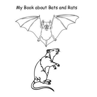Animal Workbooks