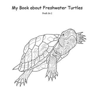 Illustration of a freshwater turtle
