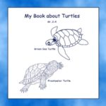 My Book About Turtles Grades 2-4