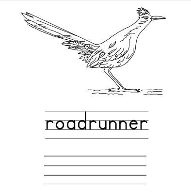 "Image of a roadrunner with the word ""roadrunner"" and lines to write the word"