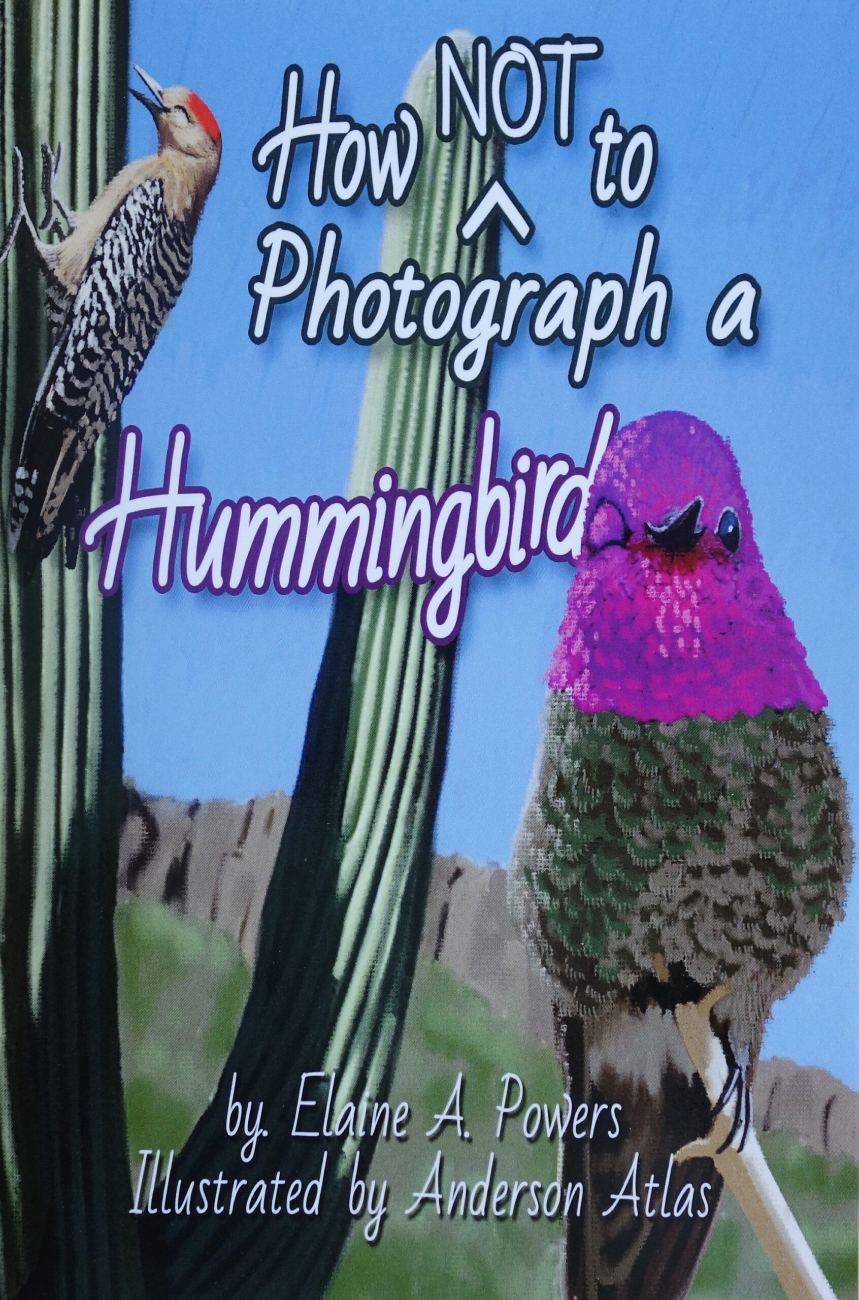 Colorful book cover illustrated with Anna's Hummingbird in The Sonoran Desert