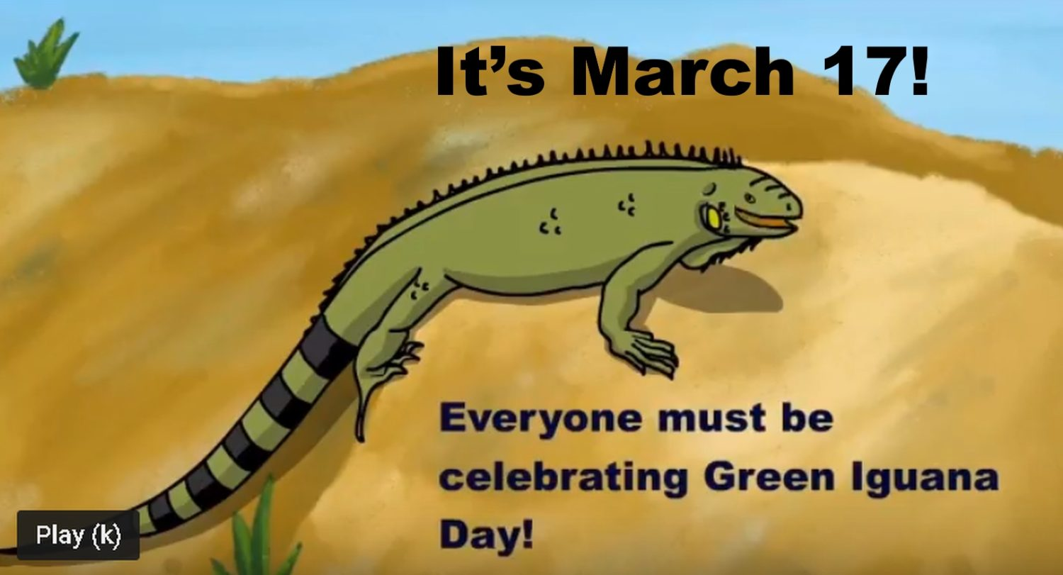 An illustration of a green iguana on a tan beach, with a small part blue sky. Words: March 17! Everyone must be celebrating Green Iguana Day!