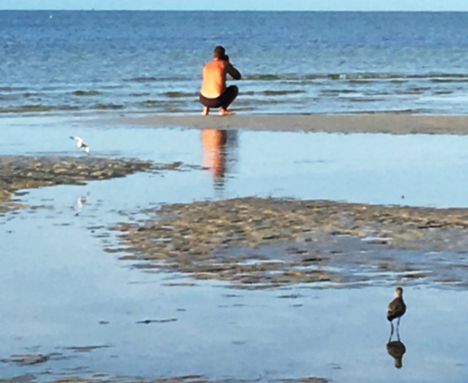 ocean, beach, man in swimsuit squatted, photographing water, while a bird creeps up behind him