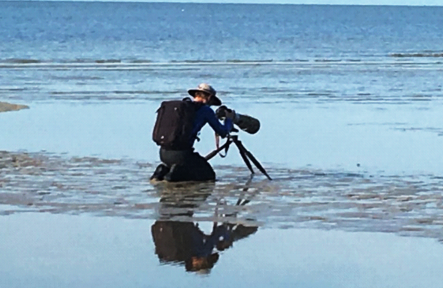 Ocean, beach, photographer on knees with camera and huge lens on tripod