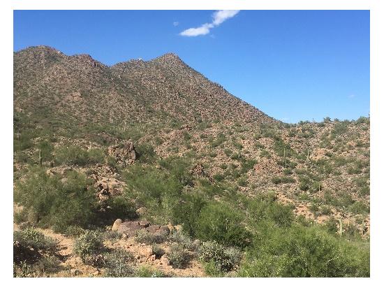 Southern Arizona desert mountains