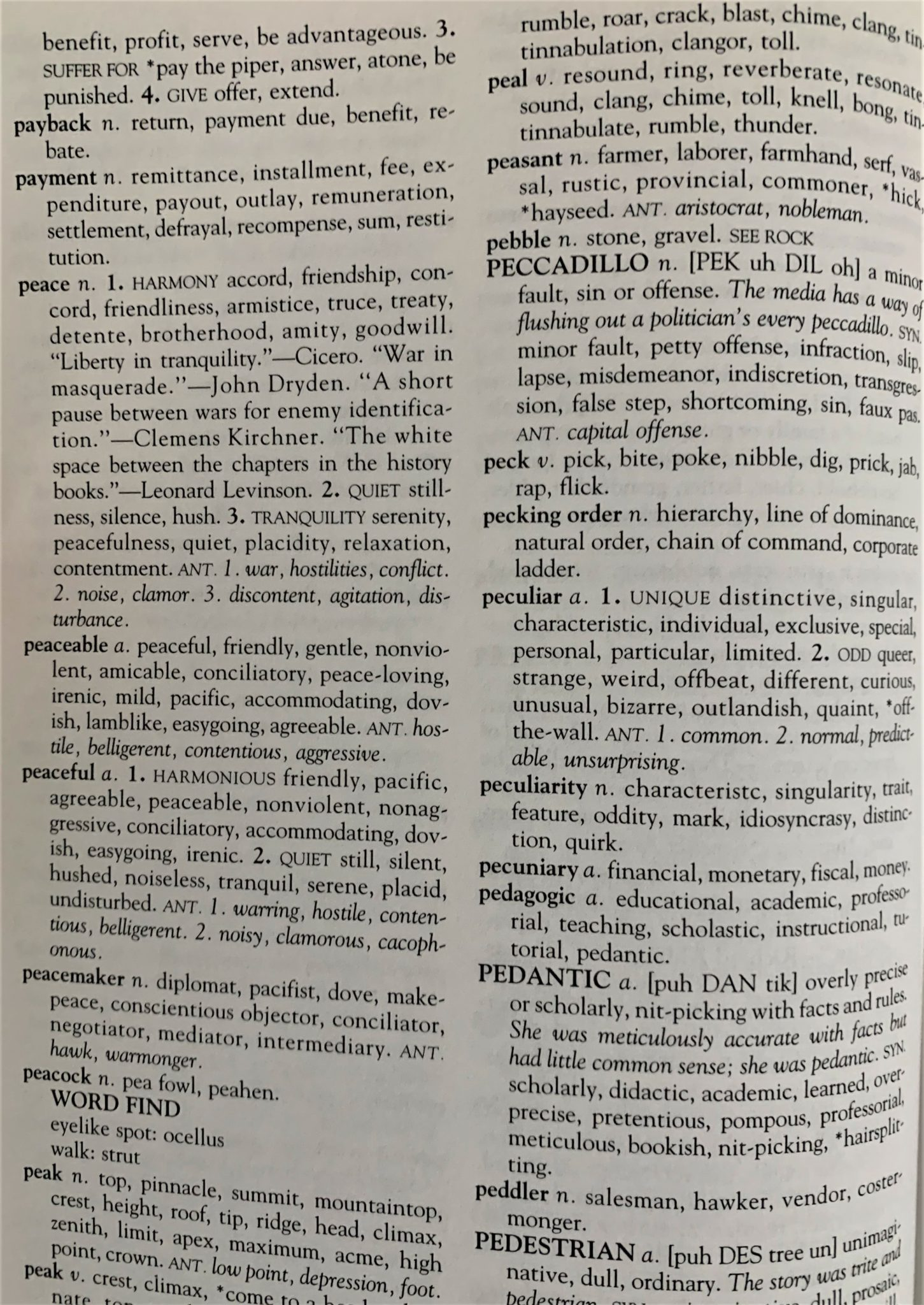 photo of a page of a thesaurus