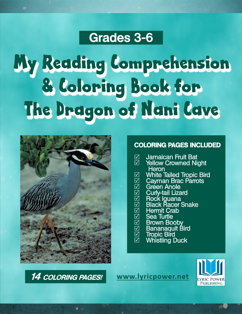 book cover Reading Comprehension forbook Dragon Nani Cave