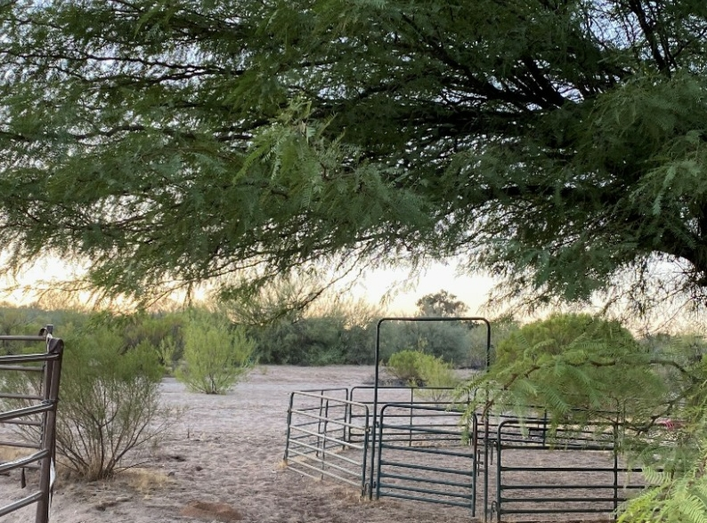 image of a horse pen in southern AZ